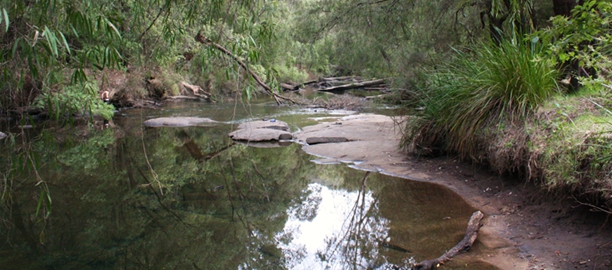Honeymoon Pool on the Collie River